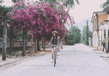 T01CTT – City Tour Quy Nhơn – Tour 01 Ngày Nội Thành Hot Nhất Mùa Hè
