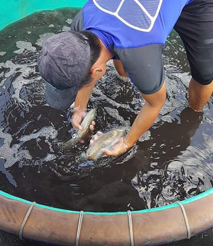 Khách có thể tự mình lựa hải sản để chế biến - ảnh:ST