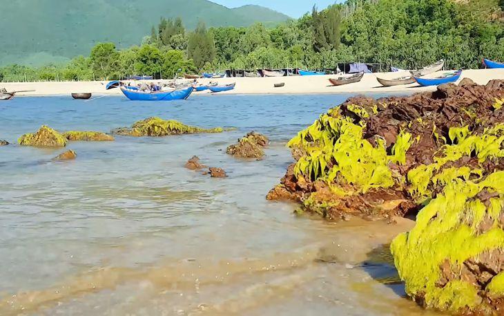 Khung cảnh biển tuyệt đẹp với đá, với biển