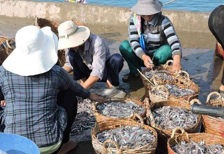 Dùng cơm trưa với những món hải sản tươi ngon được đánh bắt bởi dân chài nơi đây - ảnh:ST