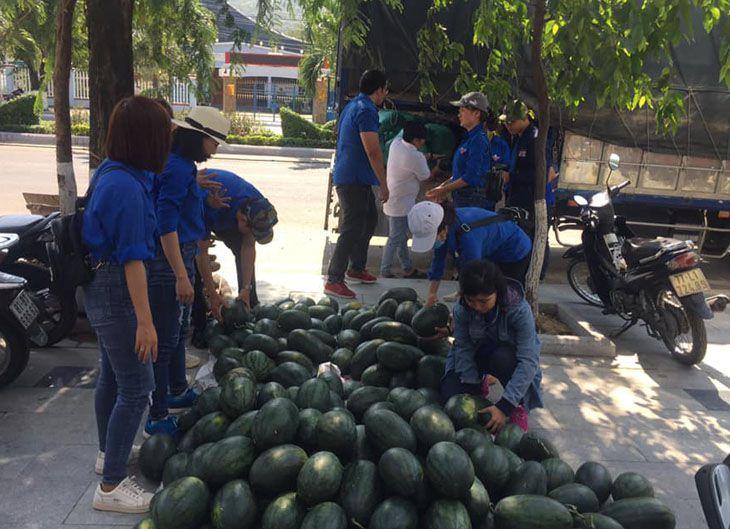 Giải cứu dưa hấu, giúp người nông dân bán dưa - Ảnh:ST