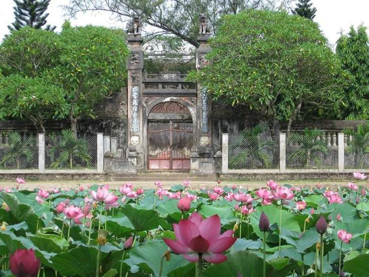 Mùa sen nở rộ, nét đặc sắc cũng rất tuyệt khi đến thăm viếng chùa - Ảnh:ST