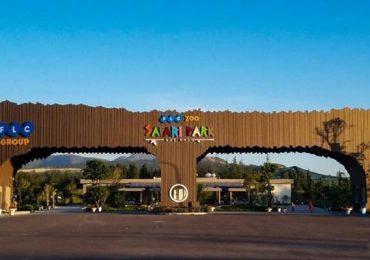 FLC Zoo Safari Quy Nhơn – Khám phá sở thú với hơn 900 loài động vật